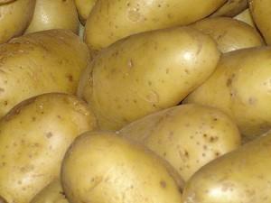pommes_terre